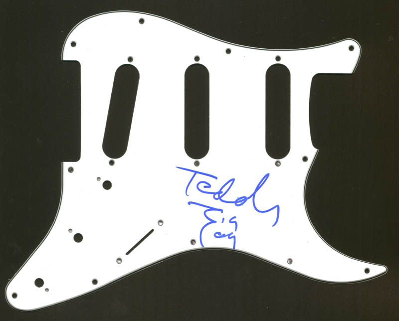Image 1 for Teddy Zigzag - Pick Guard Signed - HFSID 274875