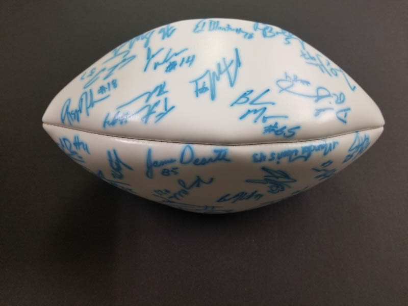 Image 3 for New York Jets - Football Signed with co-signers - HFSID 277329