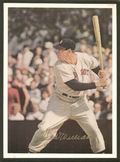 TED WILLIAMS - NEWSPAPER PHOTOGRAPH SIGNED