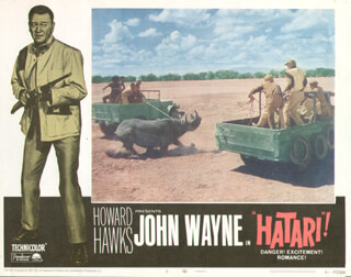 HATARI! MOVIE CAST - LOBBY CARD UNSIGNED (USA)