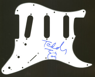 TEDDY ZIGZAG - PICK GUARD SIGNED