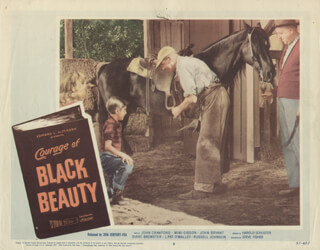COURAGE OF BLACK BEAUTY MOVIE CAST - LOBBY CARD UNSIGNED (USA) 1957