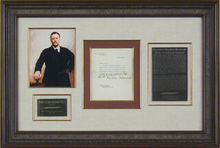 Autographs: PRESIDENT THEODORE ROOSEVELT - TYPED LETTER SIGNED 06/29/1906